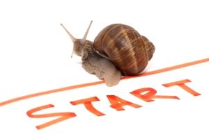 start snail